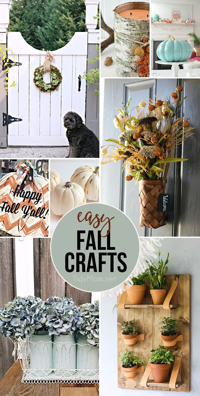 Easy Fall Crafts Anyone Can Make. From a living succulent wreath and dried hydrangeas to painted pumpkins, door hangers and more. Find all the tutorials at TidyMom.net