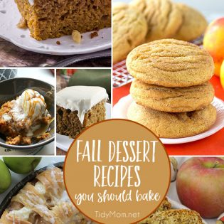 Fall is just around the corner! Crisp cool air, PSLs,bon fires and sweater weather. Crank up the oven.......your house is about to smell amazing!! Time to bring on all the Fall Dessert Recipes! details at TidyMom.net