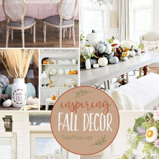 Inspiring Fall Decor for a cozy home. From porches to dinning rooms find traditional and non-traditional fall decor and more at TidyMom.net