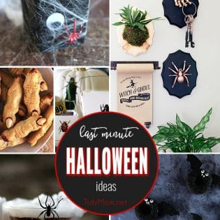 Whether you are looking for cute food options, creep cocktails for a Halloween party, class treats, or fun halloween decor, these last minute Halloween ideas are spooktacular. Get all the spooky details at TidyMom.net
