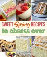 Sweet Spring Recipes to obsess over!! From Lemon Chiffon Layer Cake and Coconut Pound Cake to Spring Sherbet Cake, Carrot Cake Trifle and more you're going to want to make them all!! Head to TidyMom.net for all the recipes!