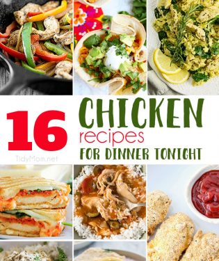 16+ Delicious Chicken Recipes for dinner tonight!! Get all the chicken dinner recipes at TidyMom.net