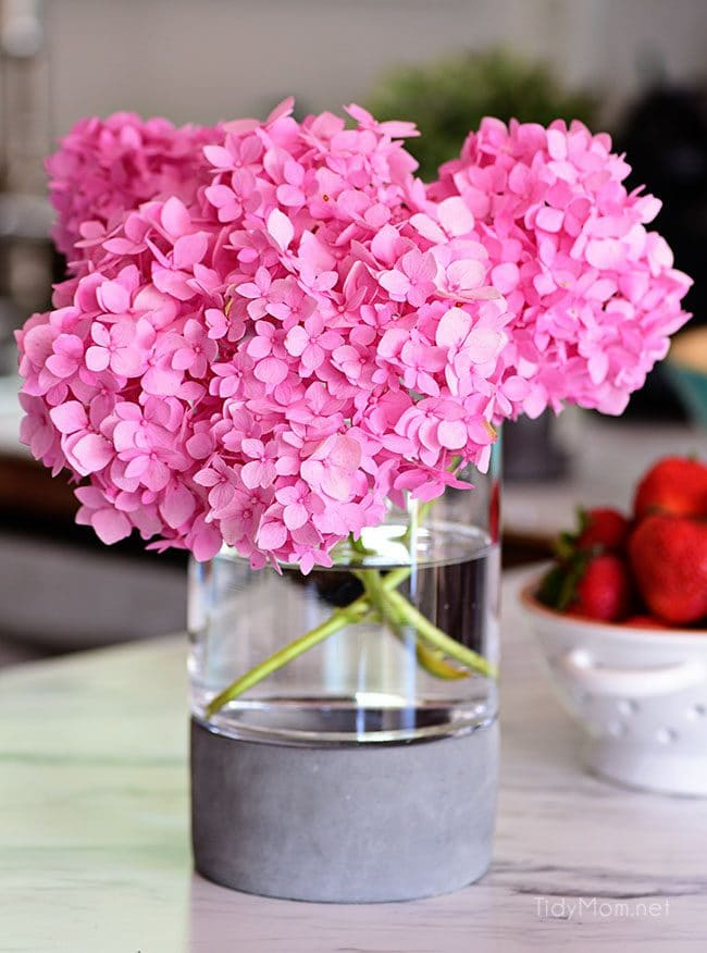 Learn essential hydrangea care tips to keep your fresh cut hydrangeas looking beautiful longer. You'll be amazed at how long you can make your flowers last! Get the details at TidyMom.net