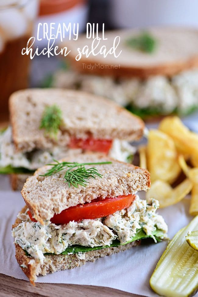 This Creamy Dill Chicken Salad is a twist on an old favorite with tons of room for variations and additions - the perfect dish for potlucks and picnics! A mix of dill weed, dijon mustard, greek yogurt, mayonnaise and more come together for chicken salad perfection! Serve on bread with your favorite toppings for a lunch you won't regret! Print the full recipe at TidyMom.net #chickensalad #chicken #sandwich