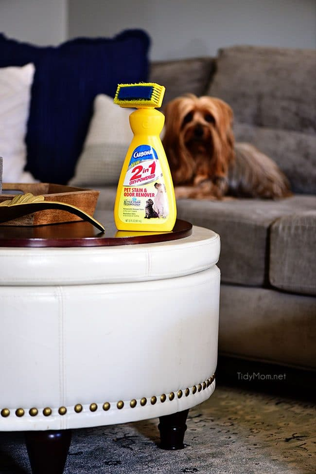 10 Brilliant Tips To Make Your House Smell Good Tidymom 174