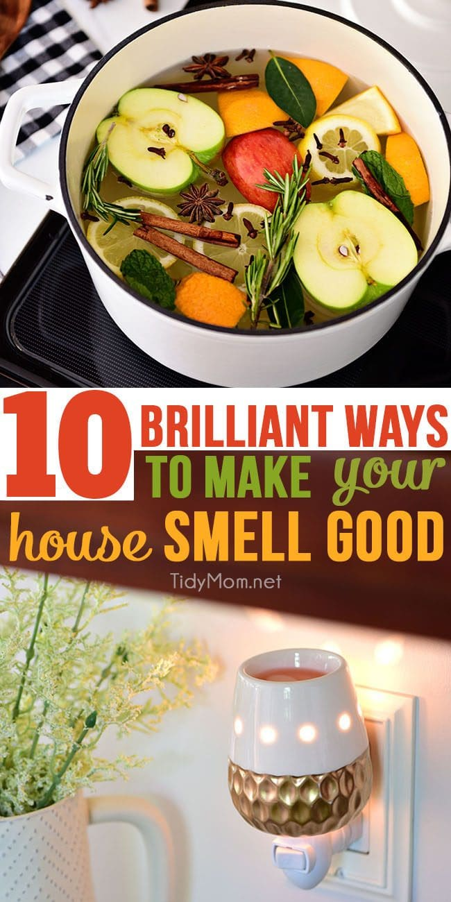 Don't you love it when someone walks into your home and tells you that your smells amazing? Have you wondered how to make your house smell good? Believe it or not, it's not hard! With these 10 brilliant tips to follow you will learn how to make your house smell good all the time. Visit TidyMom.net for details