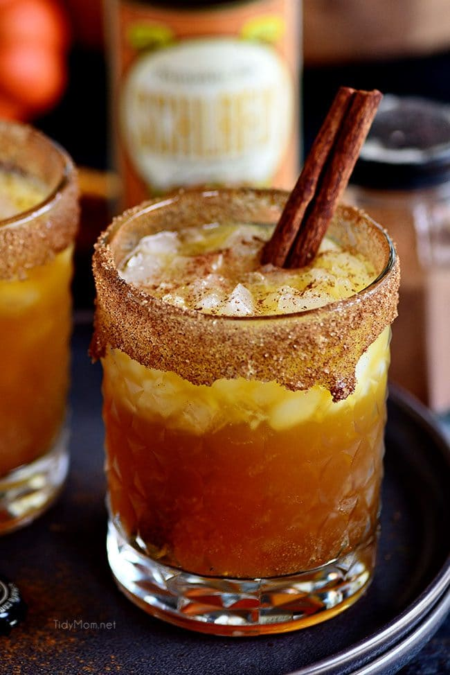 Smashing Pumpkin Cocktail in glass with cinnamon stick