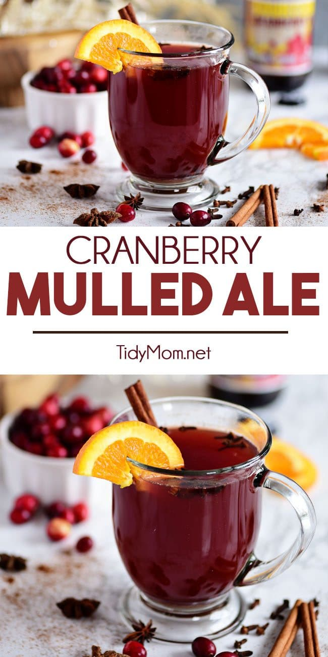 Warm Cranberry Mulled Ale