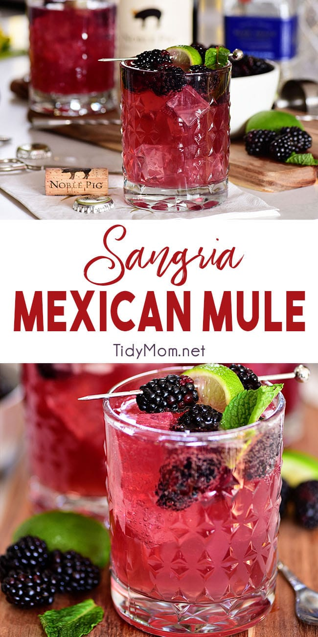 Wine lovers, this Moscow Mule is for you!! Sangria Mexican Mule is a tequila based version of the classic Moscow Mule along with red wine and berries. Making it fruity, zingy and a guaranteed win. Print the full recipe at TidyMom.net #mosowmule #sangira #cocktails #cocktailrecipe #wine #tequila