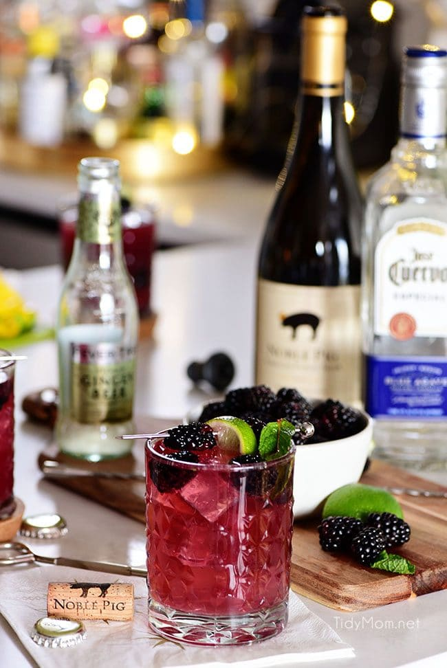 Sangria Mexican Mule cocktail with blackberry garnish, wine, tequila and ginger beer