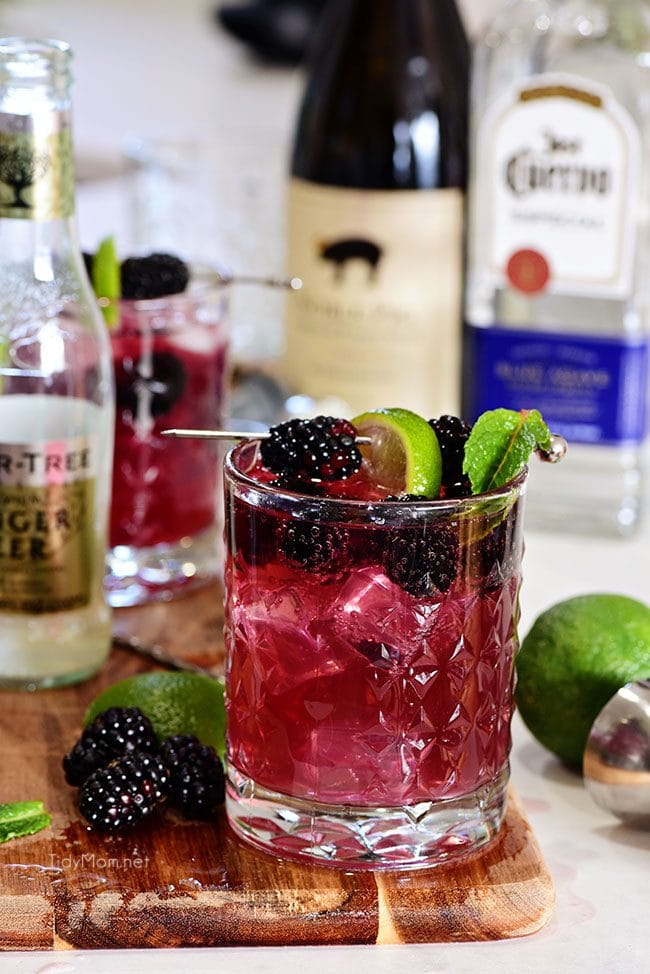 Sangria Mexican Mule cocktail in glass with blackberry garnish, wine, tequila and ginger beer