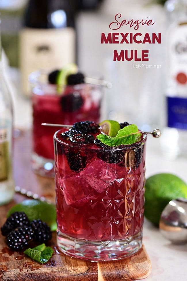 Sangria Mexican Mule cocktail in glass with blackberries