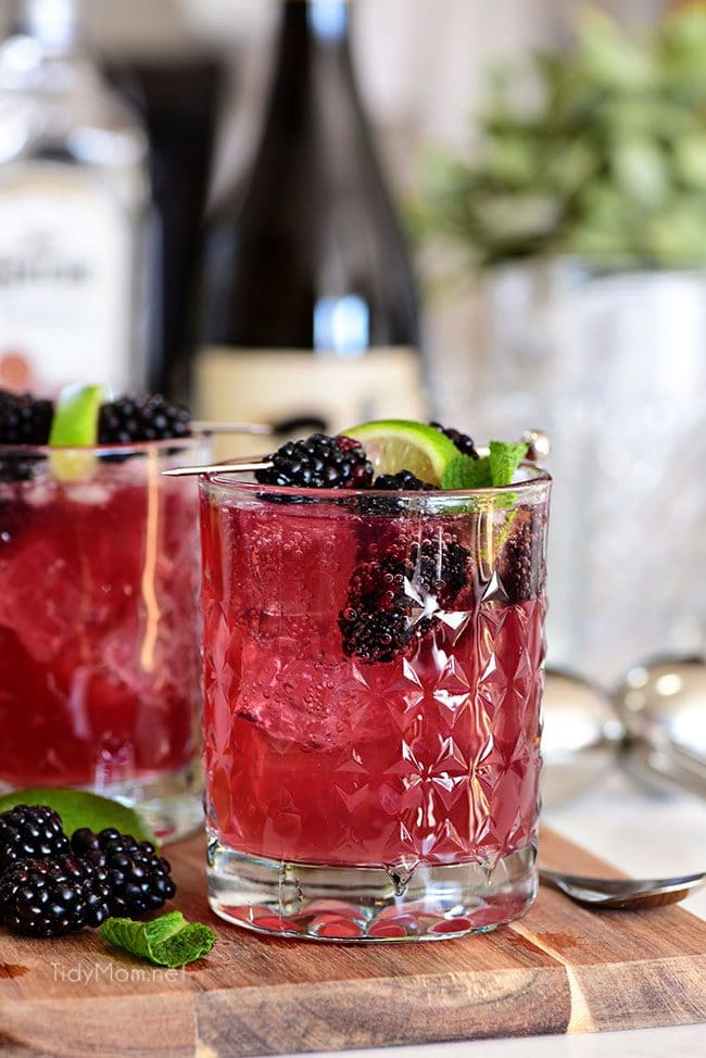 Sangria Mexican Mule cocktail in glass with blackberries and wine