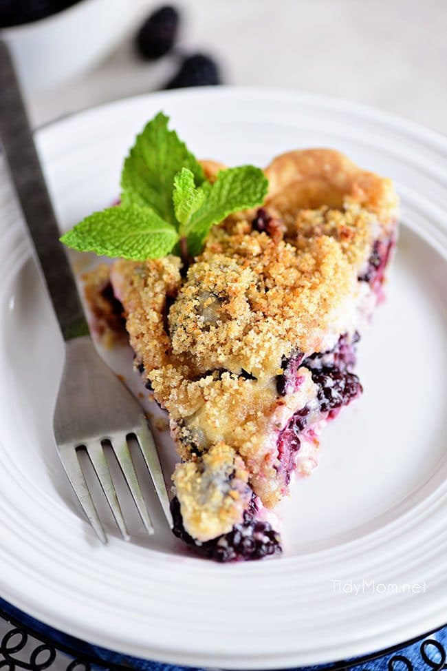 A piece of Blackberry Sour Cream Pie with sweet juicy blackberries and a crumble topping