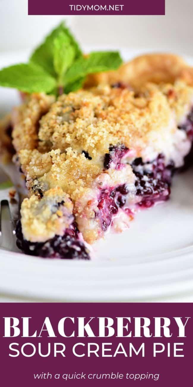 slice of blackberry pie with fresh mint garnish