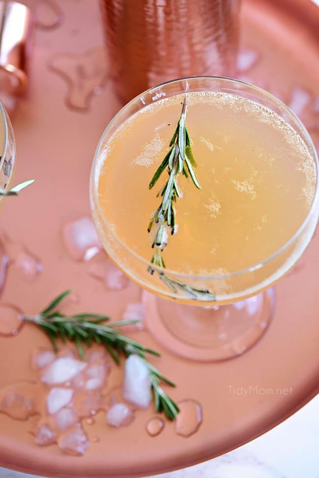 overhead shot of Bourbon Sour with smoked rosemary