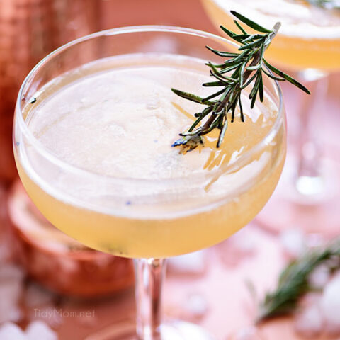 Smoked Rosemary Bourbon Sour Cocktail