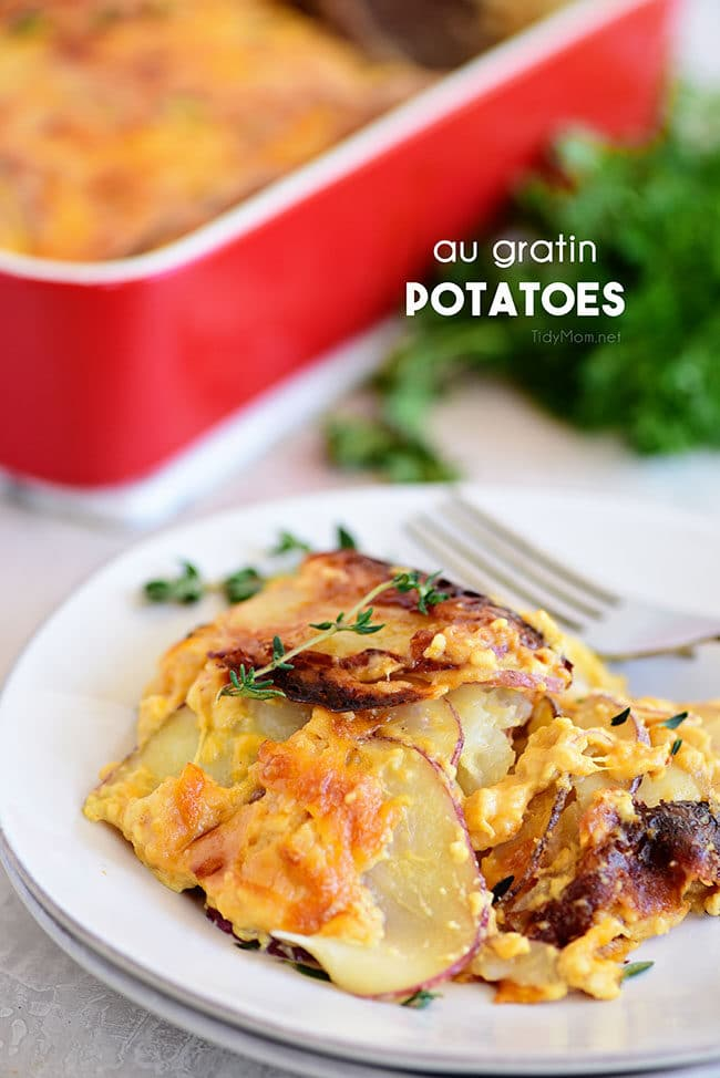 Potatoes au gratin on a plate