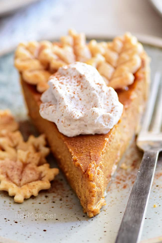 pumpkin pie slice with cinnamon whipped cream