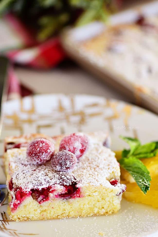 slice of Cranberry Orange Sponge Cake