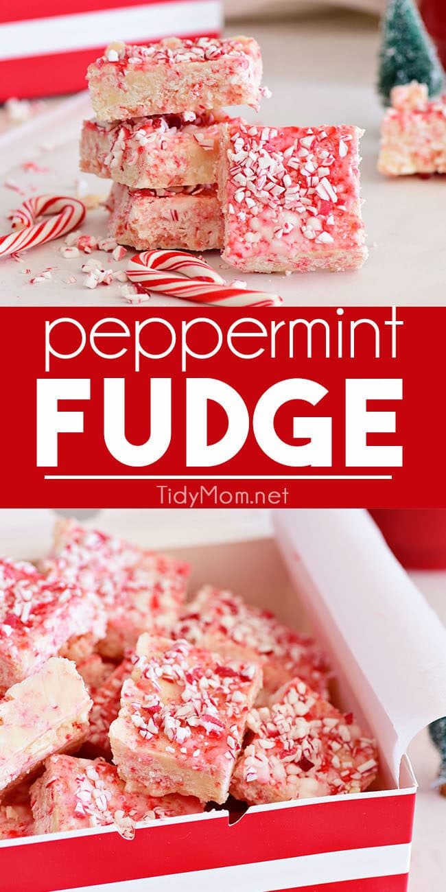 Peppermint Fudge photo collage