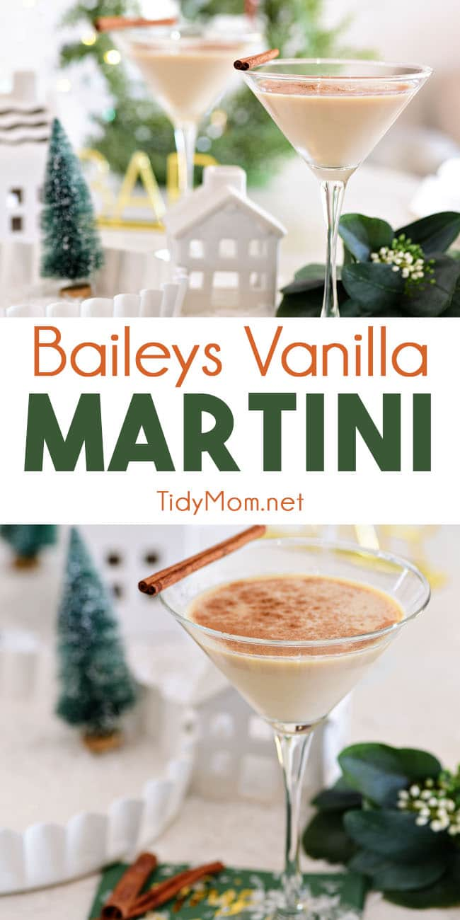 Vanilla, spice and a shaker with ice make the perfect Bailey's Martini. Irish Cream and vanilla vodka are all you need for a creamy, sweet, and utterly delicious cocktail. Printable recipe at TidyMom.net #cocktails #drinks #Irishcream #baileys #christmas #stpatricksday