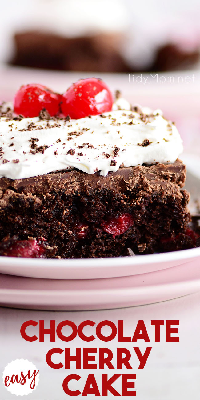 chocolate cherry cake slice on a pink plate