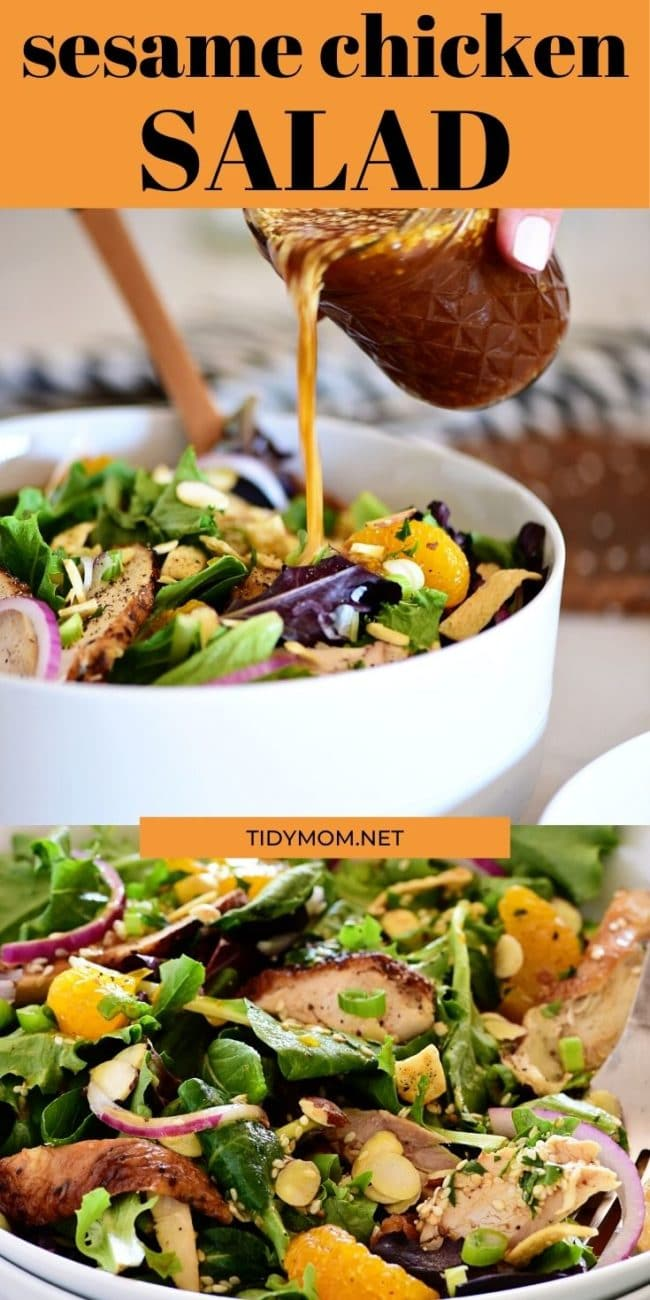 asian chicken salad photo collage