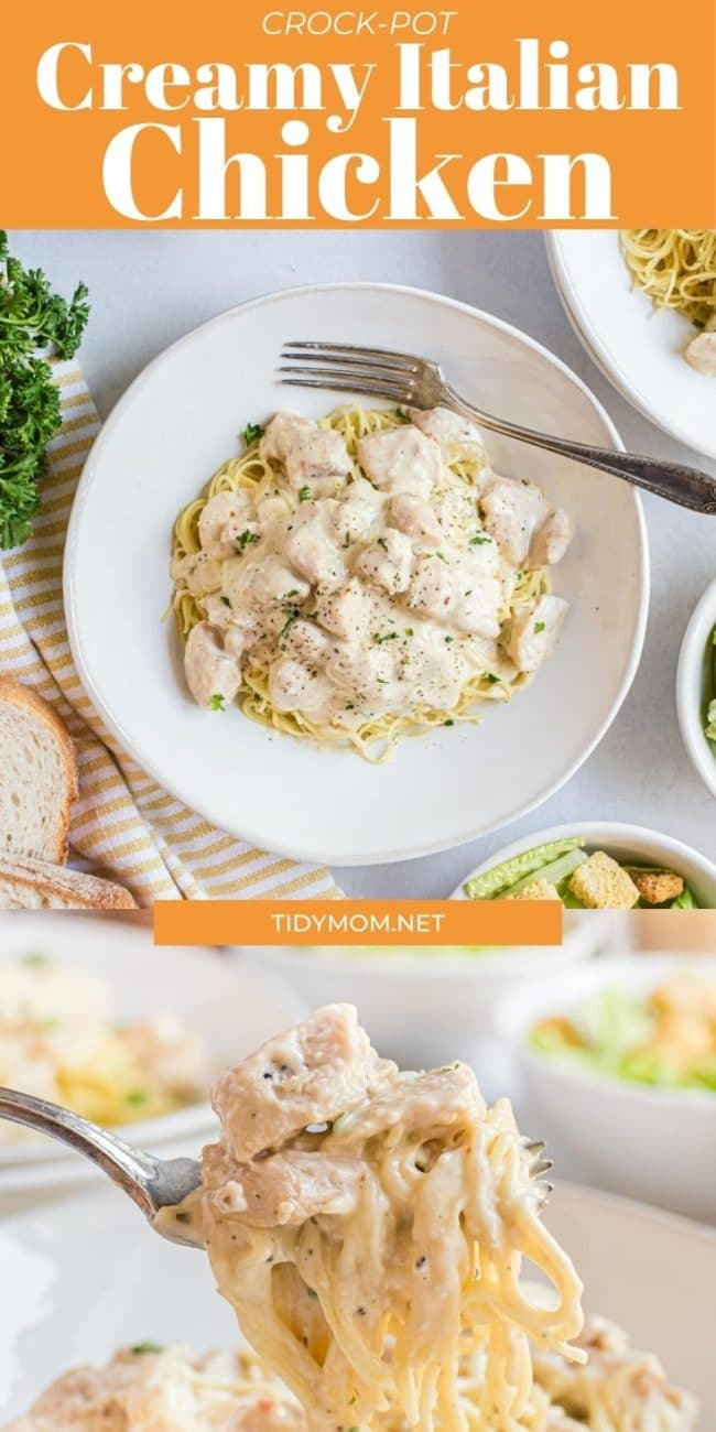 creamy chicken and pasta on a plate