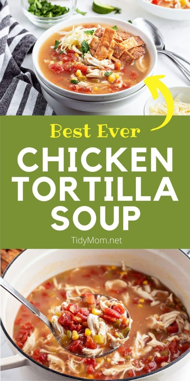 home made tortilla soup in a bowl and in a white pot