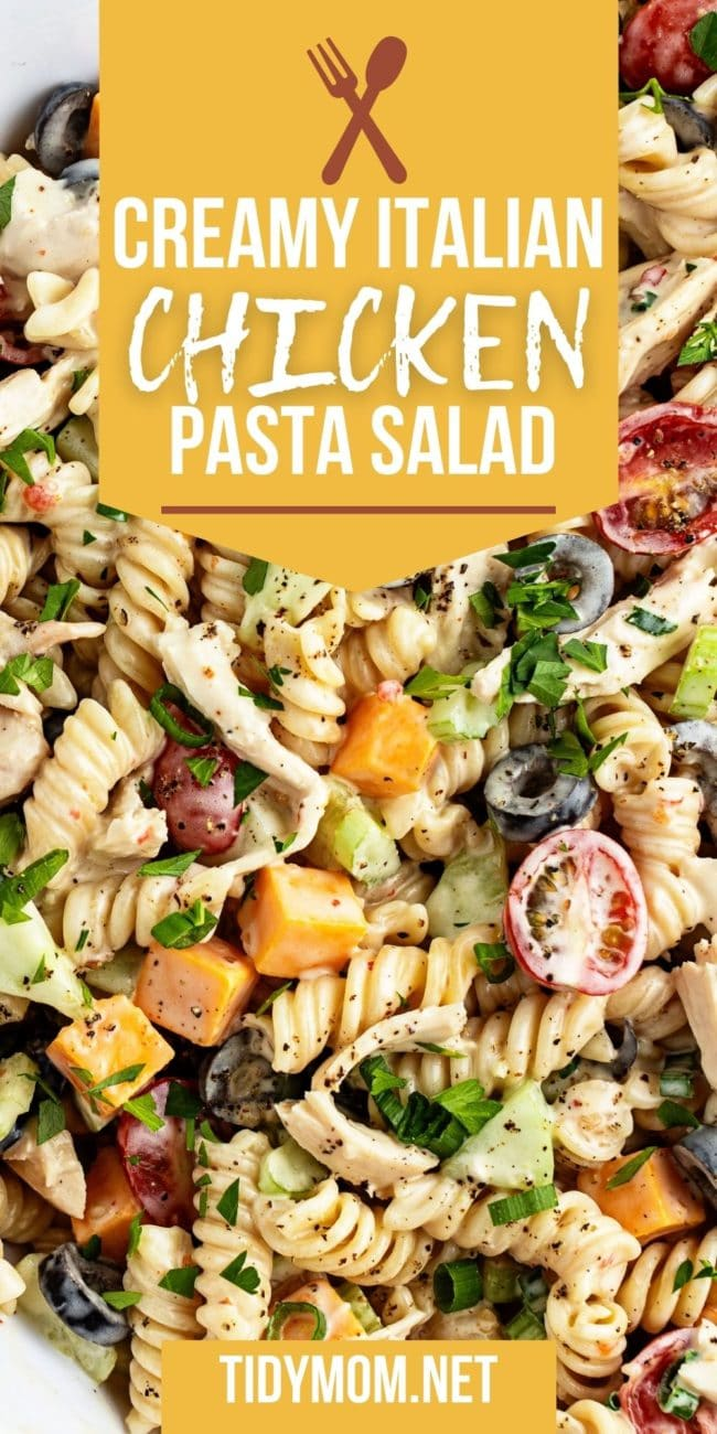 close up of pasta salad with chicken and veggies