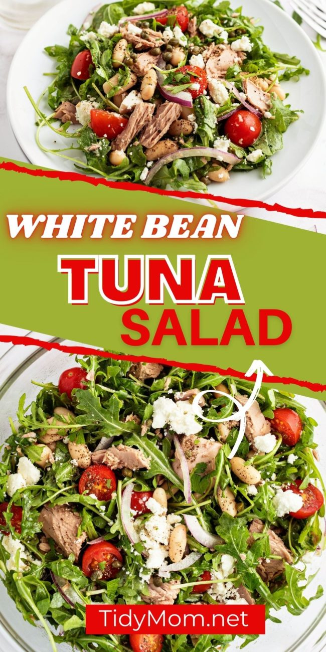 salad with tuna and beans on a plate