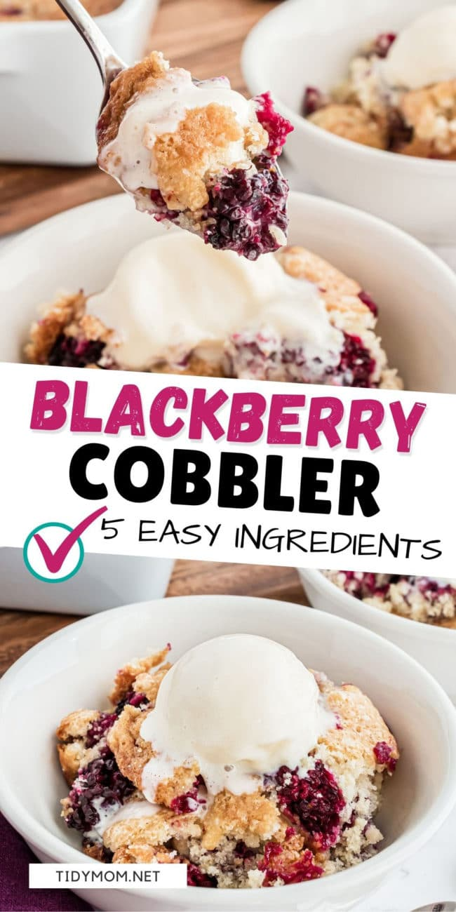 easy blackberry cobbler in a bowl with ice cream