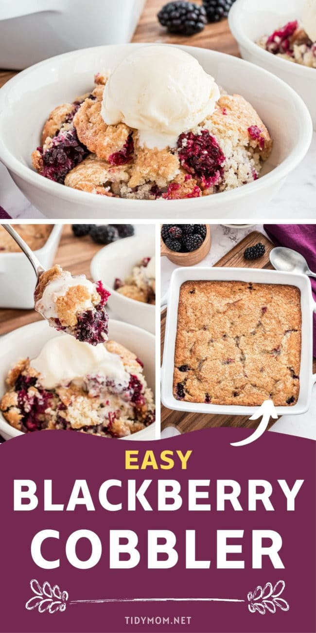 homemade blackberry cobbler in a bowl with ice cream