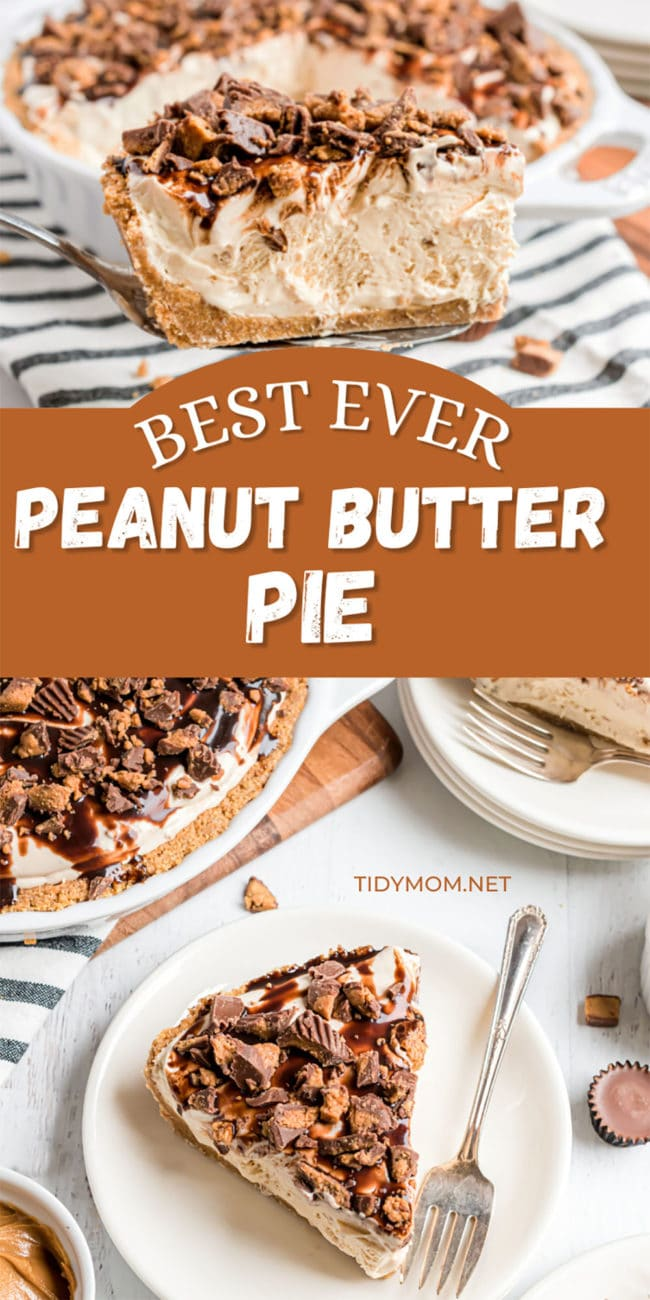 frozen peanut butter pie on a plates and in a pie dish