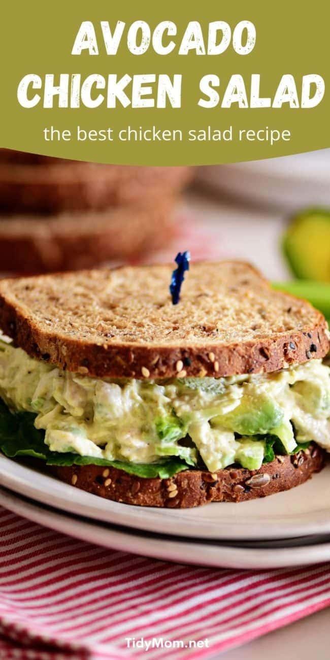 avocado chicken salad sandwich on a plate