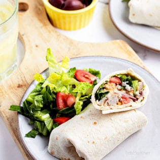 chicken wrap on a plate with a salad