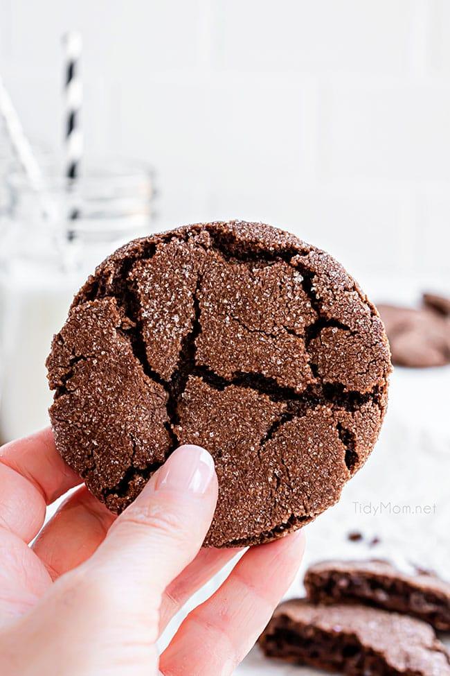 woman's hand holding a chocolate fudge cookies