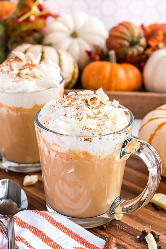 pumpkin spice hot chocolate in 2 mugs with whipped cream