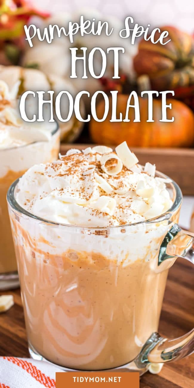 pumpkin spice hot chocolate in a glass mug with whipped cream