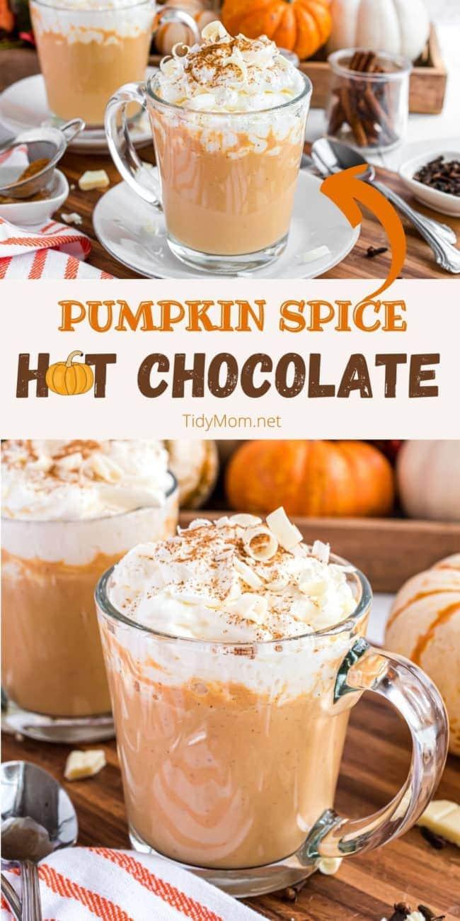 pumpkin hot chocolate in a glass mug with whipped cream